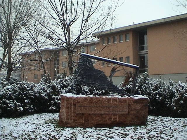 liceo biologico boscardin vicenza italy - photo#50